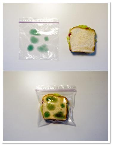 sanduiche-velho.jpg